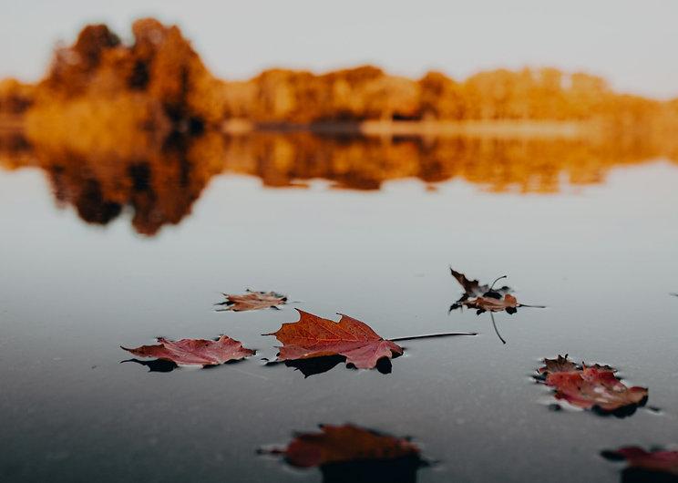 oktober_2020_edited.jpg