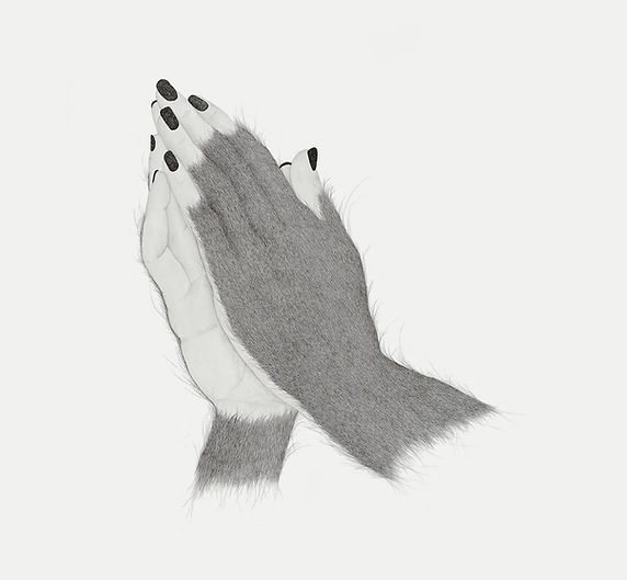 seven primates hands.jpg