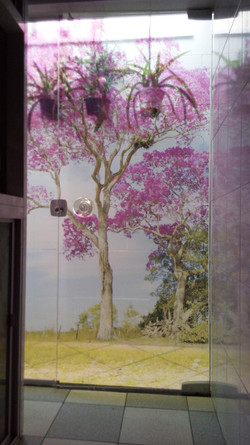 Adesivo Decorativo - Porta de vidro