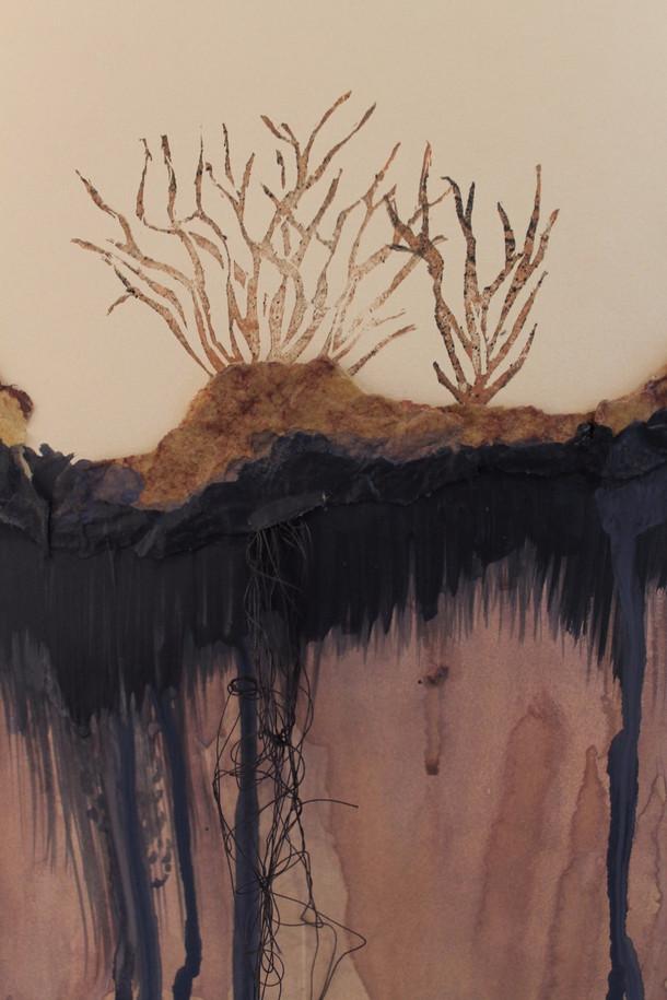 Barren Detail