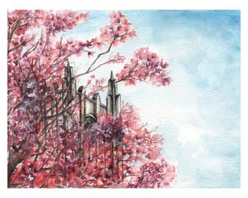 Halliburton Tower Blossoms