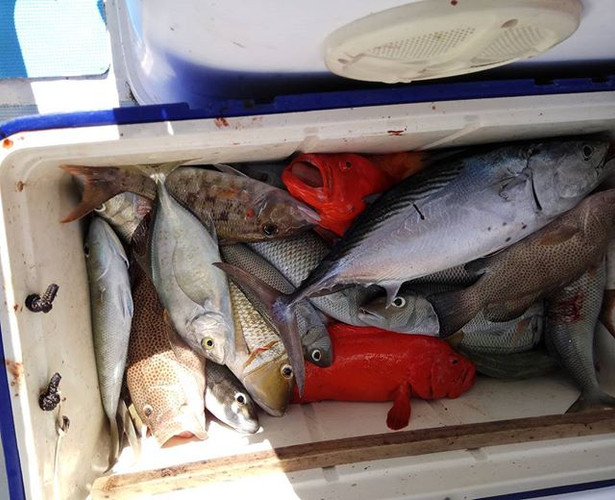 Four hours fishing. _#fishinggram #fish