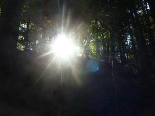 Copo de luz