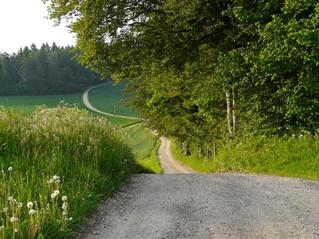 Caminos verdes