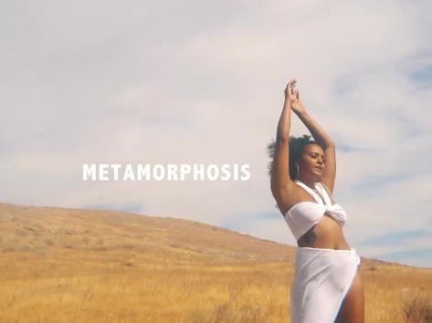 Metamorphosis - Fih Now Streaming