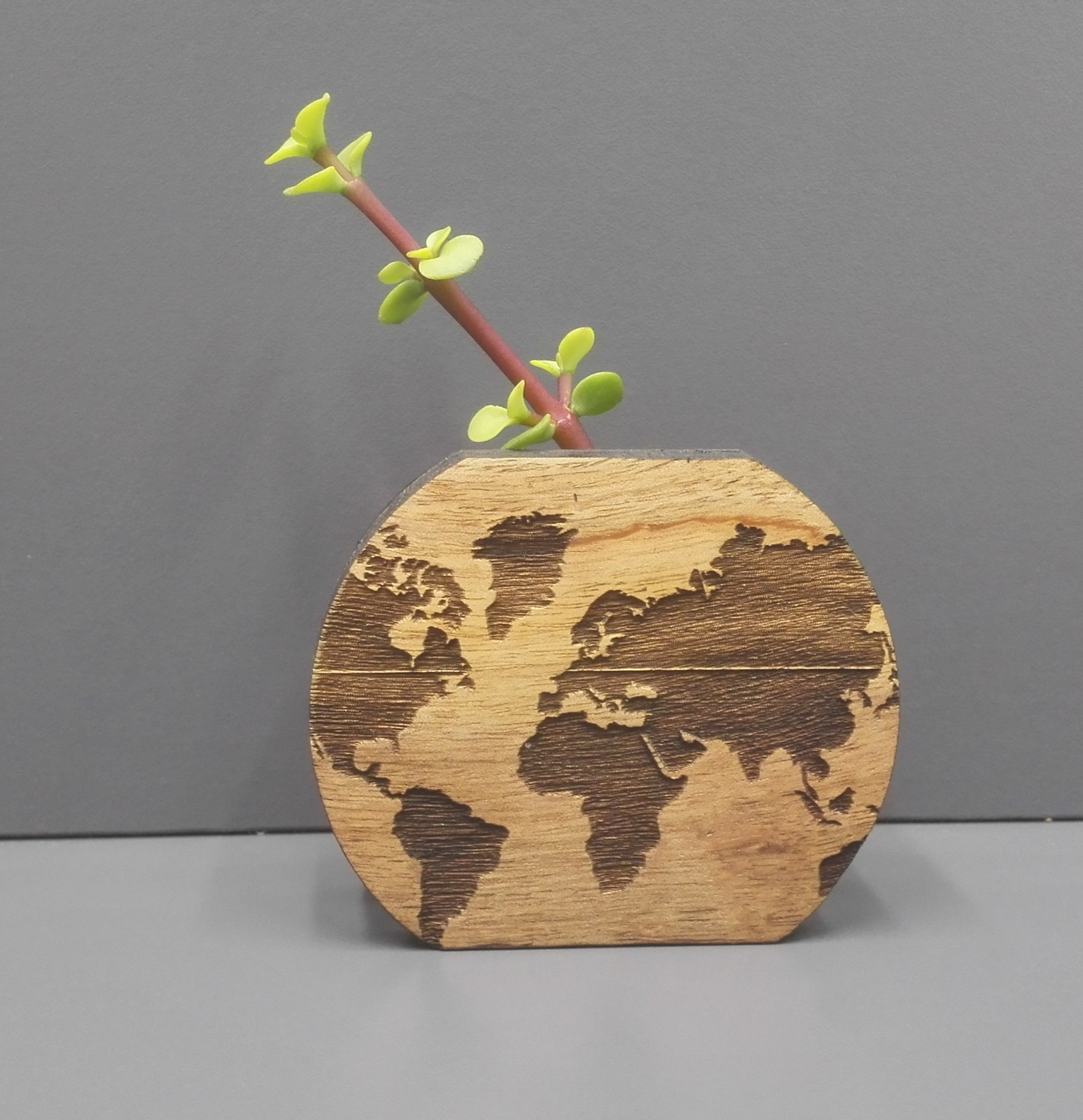 Planet pot bud vase