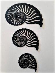 Nautilus Shells - Set of 3