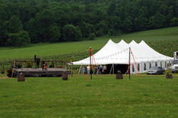 Tent by Vineyard
