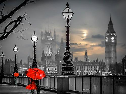 westmister red umbrela