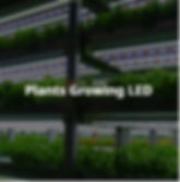 LEDランプの様々な色の高効率及び輝度を適用して、大型看板、交通信号機、車両灯等のあらゆる種類の信号機と、低消費電力、高消費電力、超薄型LEDライトで水族館を豪華に見せます。植物培養LEDHは、成長促進、短期間で収穫、土地効率上昇、水節約などのメリットがあります。