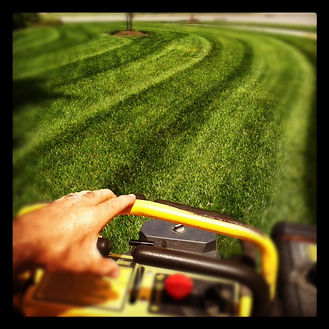 lawn service virginia beach, lawn service chesapeake va,  lawn care chesapeake, lawn care chesapeake va, lawn care virginia beach, grass cutting virginia beach, virginia beach lawn mowing service