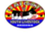 LCYL Logo  1.png