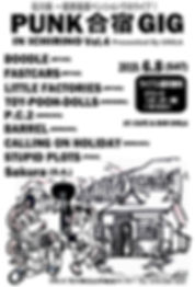punk合宿gig vol4flyer確定+sakura.jpg