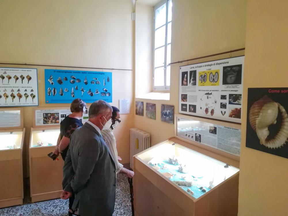 VISITA Museo Citta di Castello 002.jpg