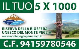 5X1000 banner.jpg