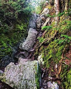 "The ""trail"". So much fun scrambling up m"
