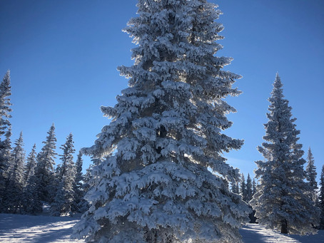 Counting Down to the Next leg of Walk the Parks: A Winter In Aspen