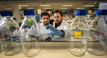 Researchers at CRSI. Townsley, Liverpool.
