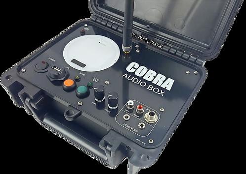 COBRA AUDIO BOX- Modulo Audio per Piromusicali