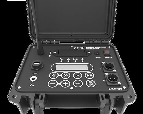 FireStorm Audio Player - Modulo per piromusicali