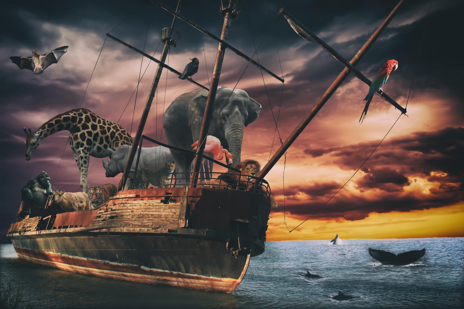 Noahs Ark Fantasy Animal Ship. Several e
