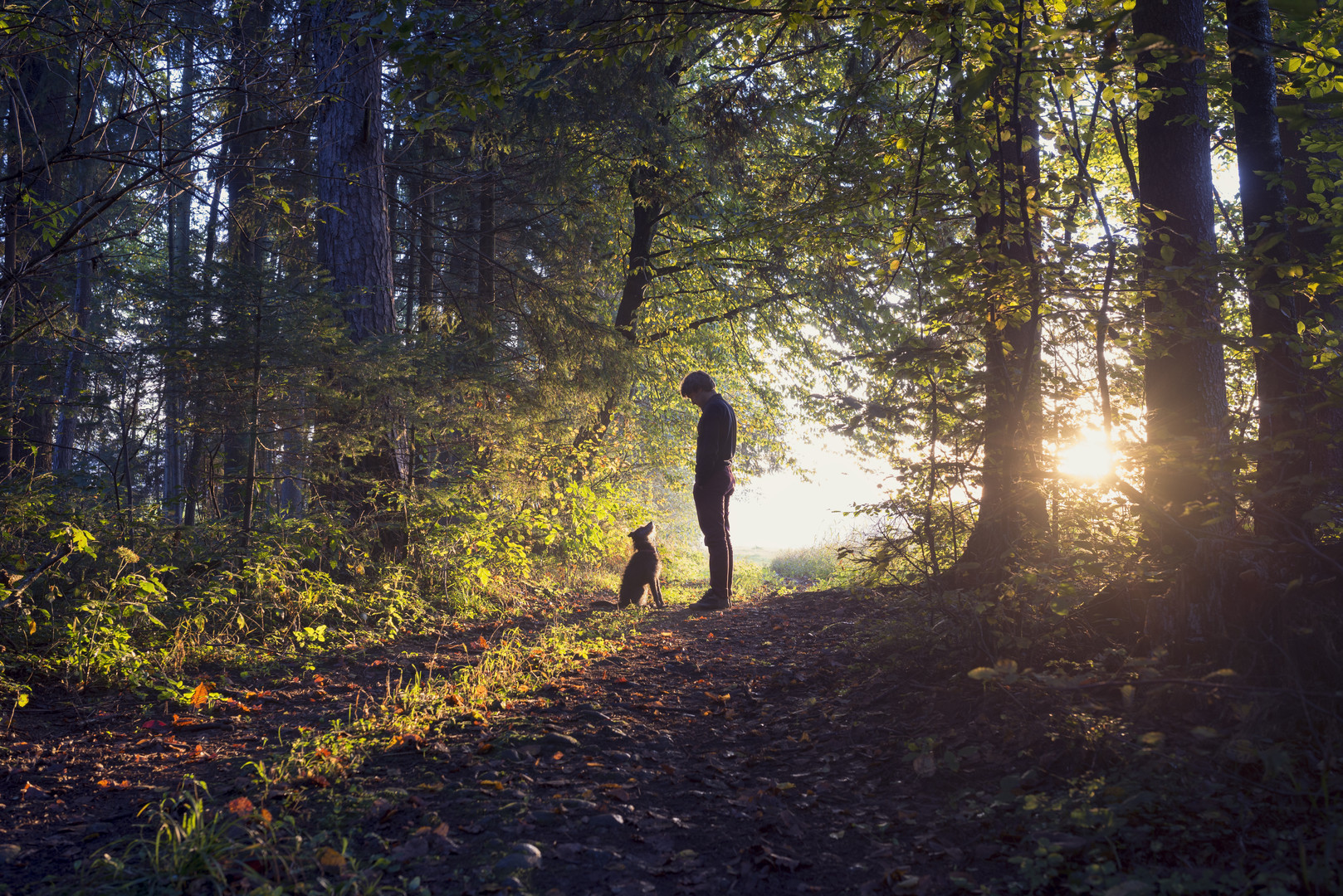 Man walking his dog in the woods standin