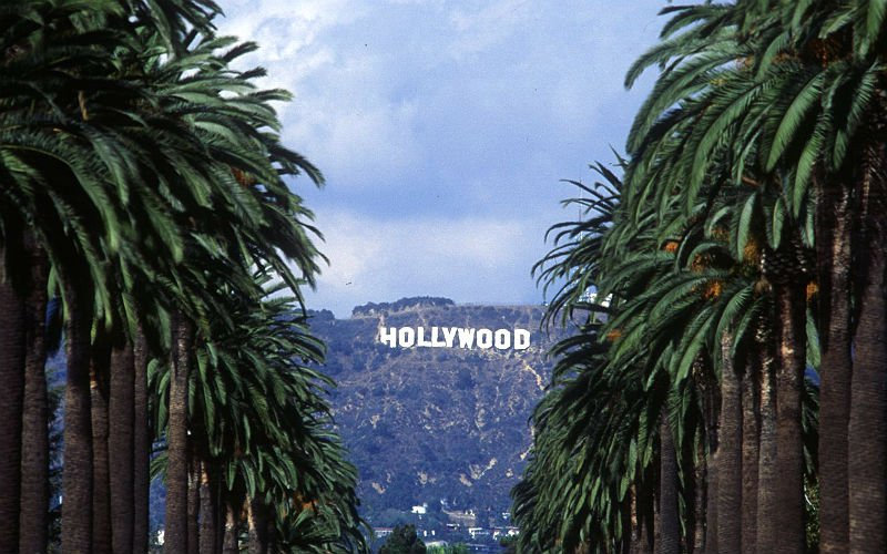 hollywood-sign-palm-trees.jpg