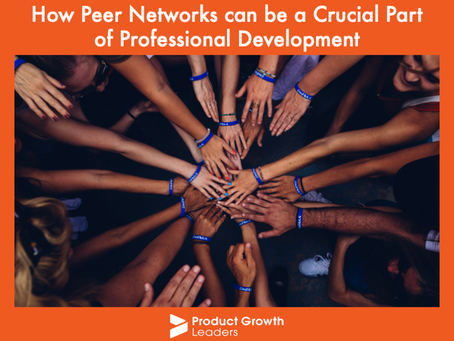 How Peer Networks can be a Crucial Part of Professional Development