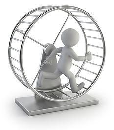3d person hamster wheel.jpg