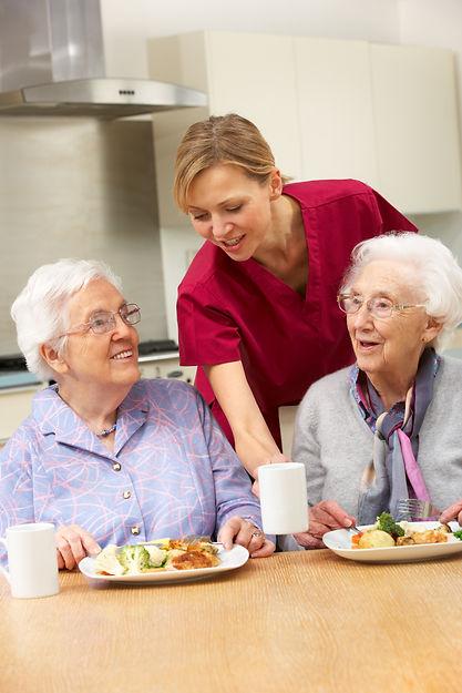 Senior women with carer enjoying meal at