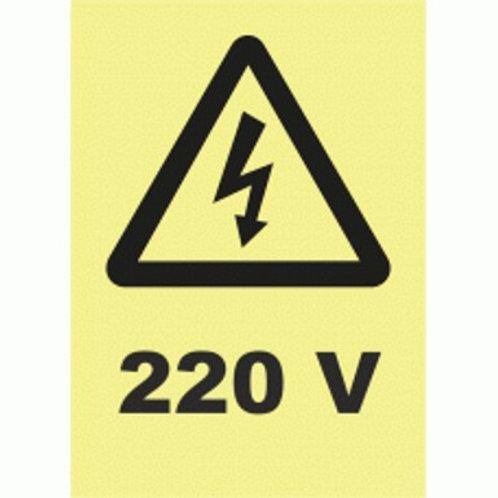 (30023) 220 V