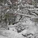 小田深山の冬季止水期間について