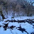 水墨画のような冬景色