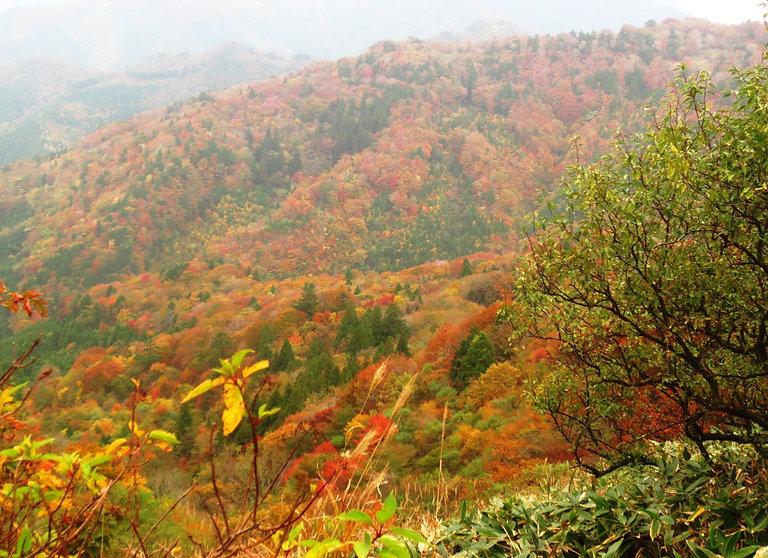 小田深山の紅葉の山並み