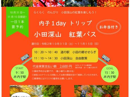 内子1dayトリップ「小田深山紅葉バス」のお知らせ
