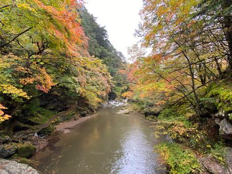 小田深山渓谷のホームページができました。