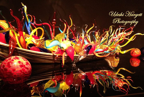 Udeshi Hargett Photography - Dale Chihuly glass art