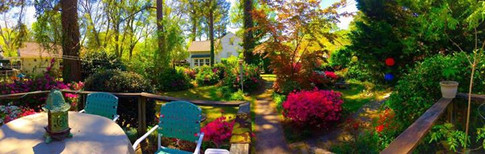 One of the perks of being an entreprenuer is working from my backyard