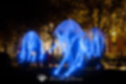074_Samhain_Clon_2018_D73_0583.jpg