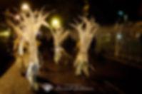 071_Samhain_Clon_2018_D73_0539.jpg