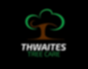 Thwaites COLOUR black.png