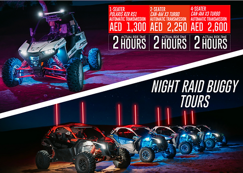 NIGHT RAID BUGGY.png