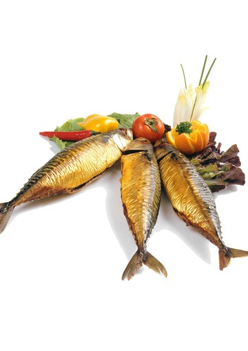Eigen bereide diepvries voeding voor tropische vissen