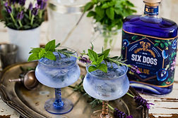 Six-Dogs-Blue-Blue-Gin-Soda-with-lavende