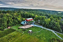 Overview of Red Heifer Winery