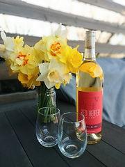 Cabana daffodils.jpg