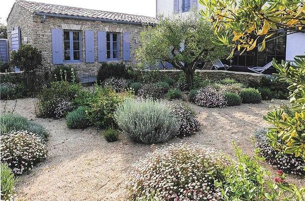 jardin sec 5.jpg