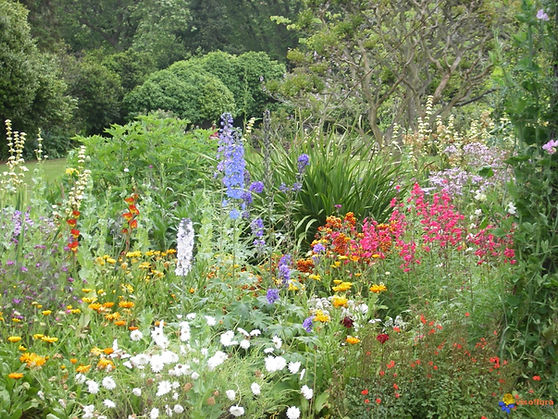 jardin-anglais.jpg