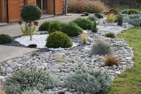 jardin sec3.jpg