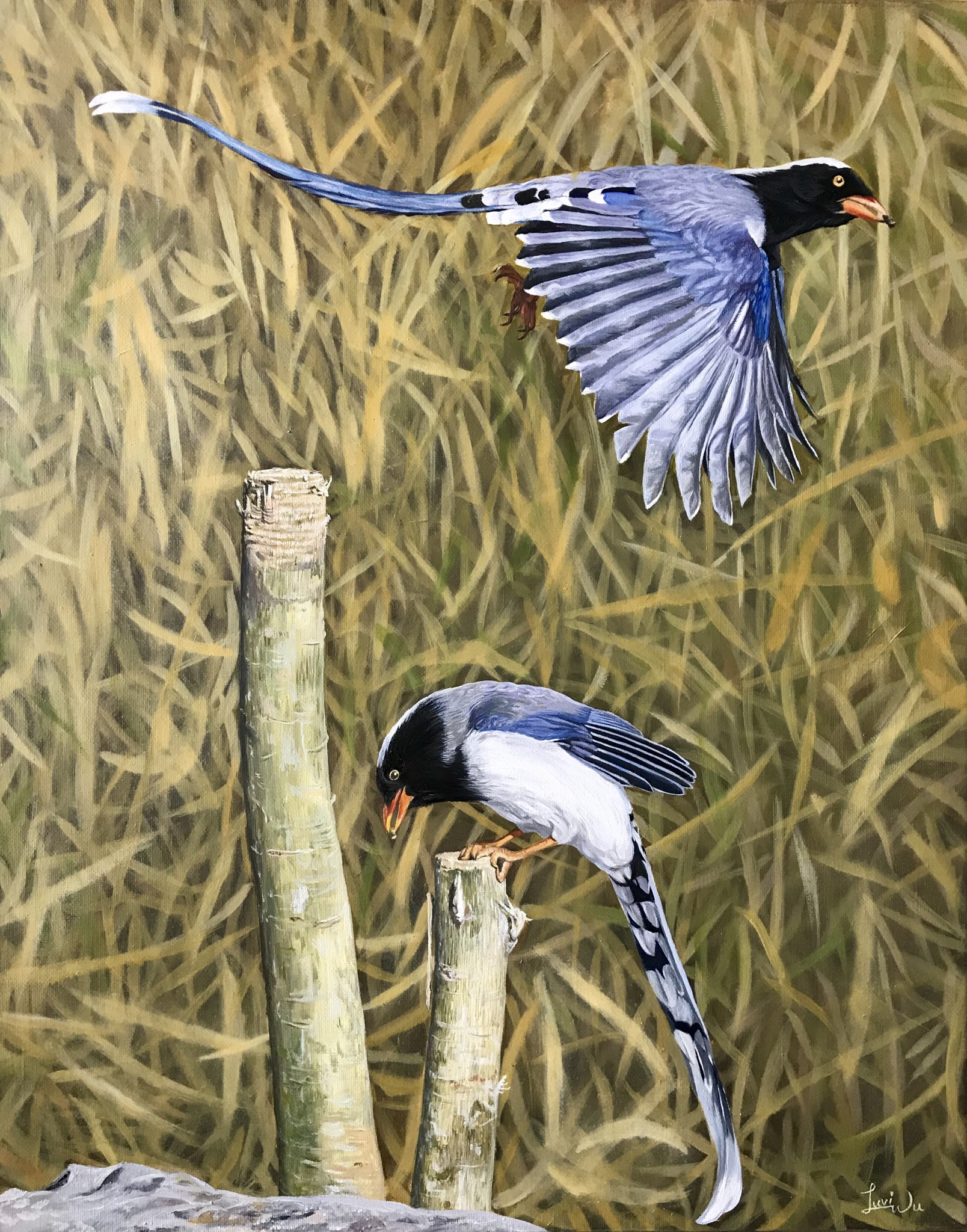 "Birds 16"" x 20"" Oil & Acrylic"